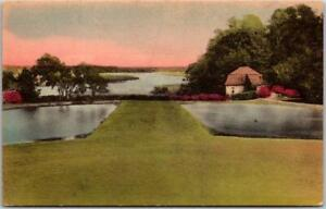1930s Charleston, SC HAND-COLORED Postcard Middleton Place Gardens Panorama View