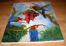 PARROTS BIRDS BOTANICAL GARDEN MACAWS RED GRAPES RAIN FOREST WOODLANDS PAINTING