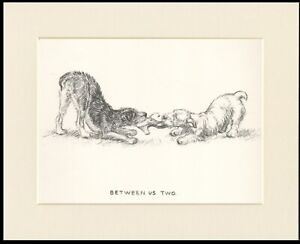 LAKELAND & SEALYHAM TERRIER LOVELY 1937 DOG ART PRINT by KF BARKER READY MOUNTED