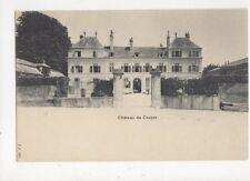 Chateau de Coppet Vintage U/B Postcard Switzerland 391a
