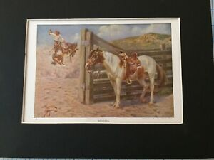 Mustang Horse Print -1923 National Geographic - By Edward Miner - MATTED