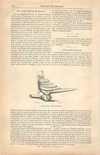 Lampe en cuivre forme de Perroquet de Perse Iran GRAVURE ANTIQUE OLD PRINT 1870