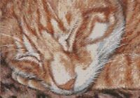 Ebay Exclusive Cross Stitch Chart - Kit Ginger Cat Up Close