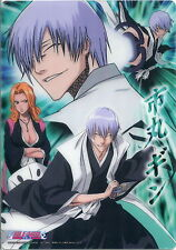 BLEACH mini Shitajiki Pencil Board mousepad - Gin Ichimaru - RARE