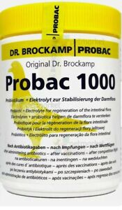 PROBAC 1000 - ELECTROLYTE & PROBIOTIC FOR REGENERATION OF INTESTINAL FLORA