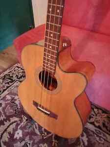 Acoustic Electric Bass Guitar - Cort SJB5F NS Fishman Electronics