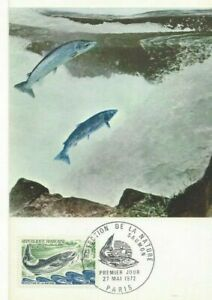 Card Postal CEF 1er Day France Protection of The Nature The Salmon 1972