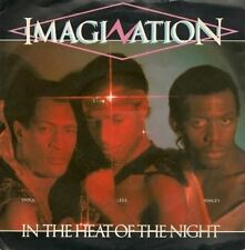 """In The Heat Of The Night 7"""" : Imagination"""