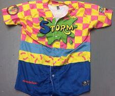 Rare OT MiLB Lake Elsinore Storm Game Used Nickelodeon Double-Dare #2 Jersey