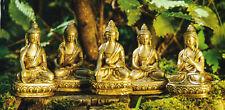Die 5 Dhyani Buddhas, transzendente Buddhas, Fünf Weisheiten, Messing