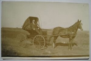 Horse, Buggy Old 1912 RPPC Postcard; Lisbon ND to New Richland MN