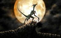 Framed Print - Dinosaur with Massive Full Moon (Picture Poster Art Jurassic)