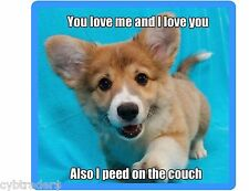 Funny Corgi Dog Pee On Couch  Refrigerator / Tool Box  Magnet Gift Card Insert