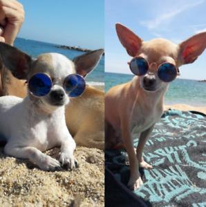 Dog Sunglasses Cat Glasses Pet Sun Protection Kitten Little Mini Funny Fun Style