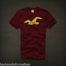 HOLLISTER Burgundy Shirt Small NeW La Costa Seagull Authentic S Soft Cotton NwT