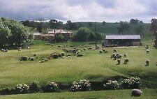 "CHARLES MURRAY AUSTRALIAN COLOUR PHOTOGRAPH ""THE FARM WITH SHEEP"" 2002"