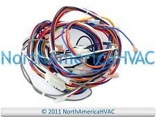 OEM Goodman Amana Janitrol Furnace Wiring Harness Connectors & Plugs 20276004