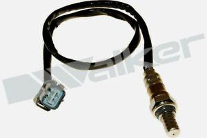 WALKER OEM Quality Lambda Sensor Honda Jazz 36531 PWE E01 36531 PWEG01 250-24760