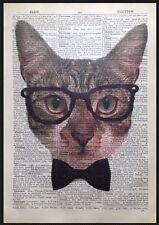 cat vintage Diccionario Página Arte Mural Imágenes Impreso Gafas hípster