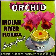 *Original* Orchid Exotic Flower Botanical Florida Citrus Crate Label Not A Copy!
