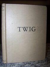 1942 Twig, By Elizabeth Orton Jones, Fairy Queen, Elf, Magic, Mr. & Mrs. Sparrow