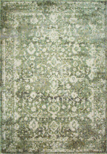 Distressed Green Transitional Rug Small Large Faded Bedroom Rugs Home Decor Rugs