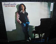 DAVID CASTLE Love You Forever (1979 U.S. 10 Track Gold Foil Stamped Promo LP)