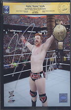 CGC Autographed Photo - Stephen Sheamus Farrelly