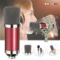 BM 700 Condenser Sound Recording Microphone Shock Mount for Radio Braodcast New
