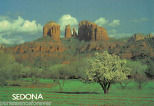 Unposted Arizona Printed Collectable USA Postcards