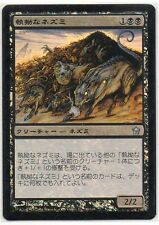 MTG Japanese Foil Relentless Rats Fifth Dawn EX