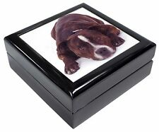 Staffordshire Bull Terrier Dog Keepsake/Jewellery Box Christmas Gift, AD-SBT2JB