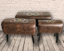 3 Faux Leather Olympic Ring Pommel Horse Stool Seat Chair Bench Home Footstool