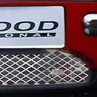 Mini cooper & Mini One Lockwood Replacement Stainless Steel Lower Race Grilles