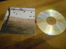 CD Indie Tallest Man On Earth - There's No Leaving (10 Song) Promo DEAD OCEANS