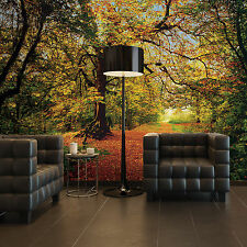 8-068 - Komar Scenics 2 Autumn Forest Multicoloured Komar Wall Mural Wallpaper