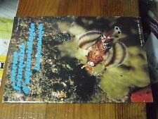 µ? Revue Française d'Aquariologie n°4 1988 Platax Batavianus Cirrhilabrus avec F