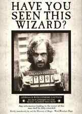 """Harry Potter - Have You Seen This Wizard(11"""" x 15-1/4"""")Collector's Poster -B2G1F"""