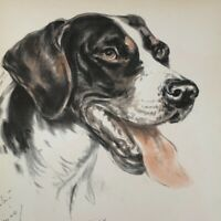 Diana Thorne's Dogs 1944 Pointer Lithograph Print Portrait