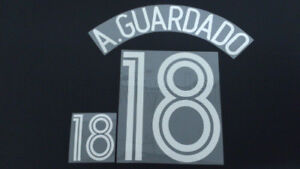 ANDRES GUARDADO #18 Mexico Home World Cup 2006 Name Set