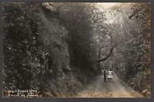 Postcard Wiston nr Steyning Sussex early view An Old Sussex Lane RP by Drewett