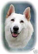 German Shepherd Dog - White - Blank Card No 6 Starprint