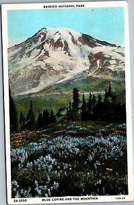 Rainier National Park Blue Lupine Paradise Inn c1929 Postcard WA MrSTUFF A1/37