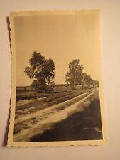 Heideweg bei Hamburg - Heide - 1936 / Foto