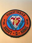 """Boy Scout, Forest Trails, 1985, Scout-O-Rama, Diamond Jubilee, 3"""", Very Colorful"""