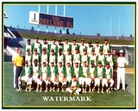 MLB 1970 Oakland A's Oakland Athletics Team Photo Color 8 X 10 Photo Picture