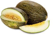 Honey Melon - Piel de Sapo - 5  seeds - HONEYSWEET!