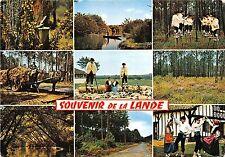 BR23415 La Lande de gauche a droite   france