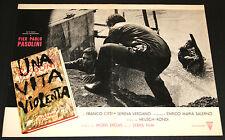 Franco Citti Pier Paolo Pasolini UNA VITA VIOLENTA fotobusta originale 1962 #4