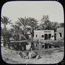 Glass Magic Lantern Slide MOSES WELLS NEAR SUEZ C1900 EGYPT EGYPTIANS